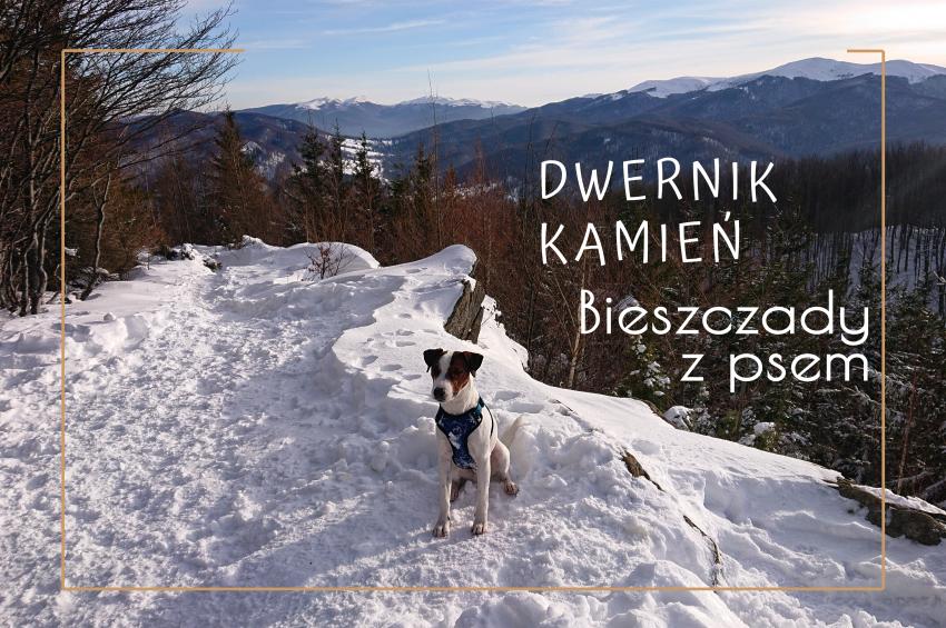 Bieszczady-z-psem-dwernik-kamien