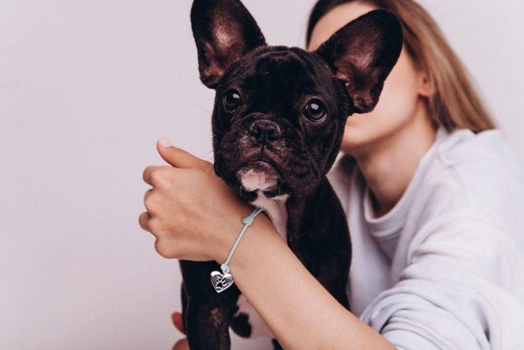 Prezent dla psiarza